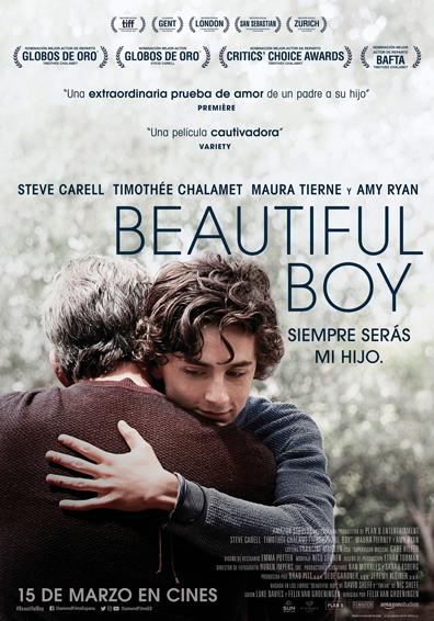 BEAUTIFUL BOY: SIEMPRE SERAS MI HIJO V.O.S