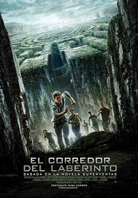 EL CORREDOR DEL LABERINTO DIGT