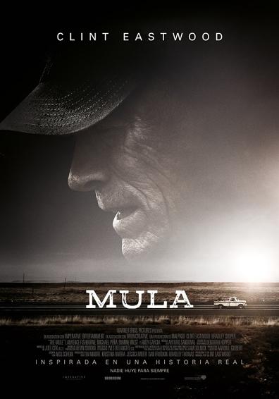MULA V.O.S